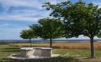 Aube: un nouveau parcours de randonnée sur les traces des templiers