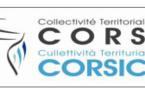 Corse : trafic en hausse de 18,2 % à Figari et de 3,2 % à Ajaccio en avril 2016