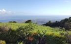 La Réunion : un road-trip d'une semaine autour de l'île intense !