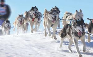 II. Laponie finlandaise : les bonnes adresses pour organiser un incentive