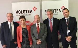 Volotea : 4 nouveaux vols au départ de Toulouse pour l'été 2017