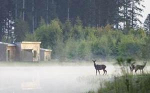 Center Parcs : le Domaine du Bois aux Daims élu meilleure destination écotourisme 2017