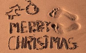 La case de l'Oncle Dom : Joyeux Noël, surtout aux grincheux !