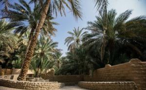 Abu Dhabi : le patrimoine de l'Oasis d'Al Aïn mis en valeur en 2017