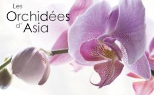 Asia lance l'opération ''Orchidées''