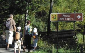 Dans le Jura, la forêt de la Joux, un «poumon vert» à l'écorce tannée