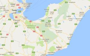 Tunisie : 2 touristes allemandes agressées à l'arme blanche