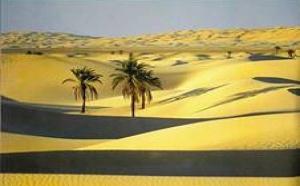 Alger : le SITV mettra à l'honneur le Sud Saharien