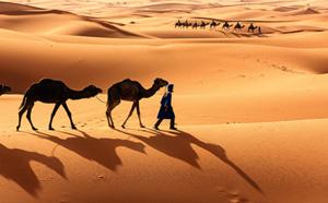 Mauritanie : 4 circuits dès mi-décembre 2017 pour Allibert Trekking