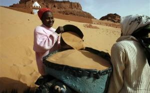 Algérie : Timimoun accueille le festival des peuples des déserts