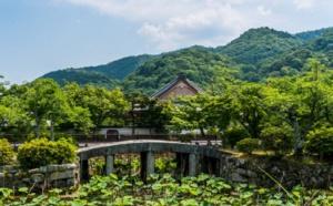 Le forum OMT/PATA s'intéresse au tourisme durable