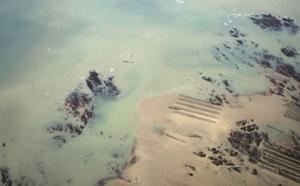 Les professionnels du tourisme abîment-ils les plages ?