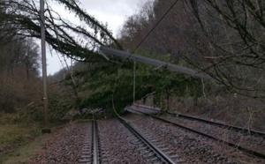 Tempête Eleanor : les trafics RER, SNFC, et aérien fortement perturbés