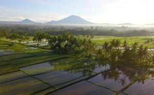 Indonésie : le Mont Agung se calme