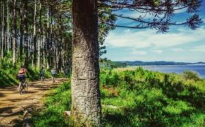 La case de l'Oncle Dom : Non, le tourisme ne profite pas aux pays de destination