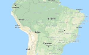Brésil : plusieurs cas de fièvre jaune recensés