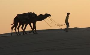 Tunisie :Nous n'aurions pas autant de visiteurs avec une hôtellerie poubelle !