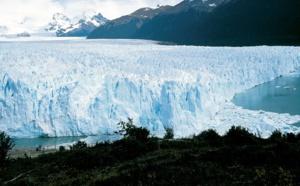 L'Argentine part à la conquête du marché français