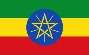 Ethiopie : le e-visa s'ouvre aux voyageurs d'affaires