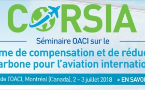 Aérien : l'OACI adopte un mécanisme de compensation carbone