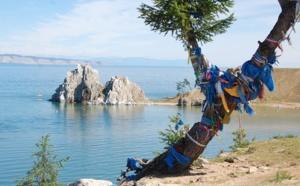 Tourisme durable : L'arbre à Voyages labellisé ATR