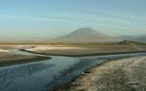 Serengeti II (le retour des Gnous) : «Les Tanzaniens ne sont pas aussi idiots...»