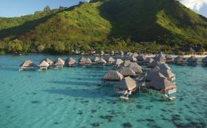 Les Hilton de Polynésie : deux adresses qui innovent pour séduire
