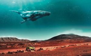Tourisme : l'Île de la Réunion bat tous les records en 2018