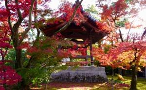 Le Japon et ses traditions avec April