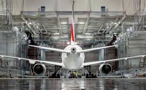 Subvention aérienne : Air France attaque le modèle économique des low cost