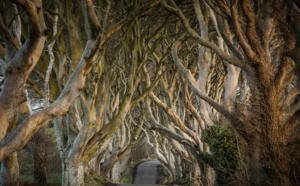 Game of Thrones: «Tourism is coming» en Irlande du Nord
