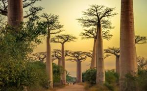 """Madagascar : La Balaguère propose un circuit """"hors des sentiers battus"""""""