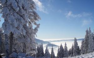 Vacances d'hiver : un quart des Français qui partent ont déjà réservé leur séjour