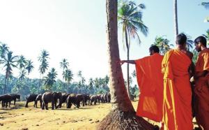 Sri Lanka : Jet tours rouvre la destination