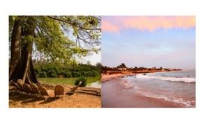 """Voyamar étend sa production autour du """"tourisme durable"""""""