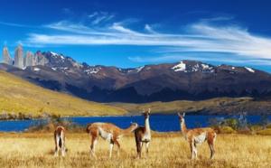 Croisières d'exception ajoute des dates pour la Patagonie et le Japon en 2020