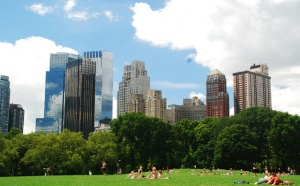 New York : +3,5% de touristes en 2011