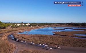 Quatre Eductours thématiques lors de France Méditerranée 2019