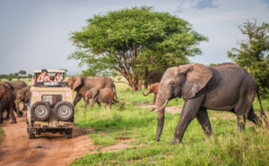 DITEX : Savanna Tours met son expertise au service des agences