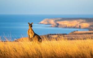 Aussie Specialists : Tourism Australia invite 8 agents de voyages pour un éductour