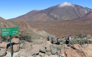 Tenerife : l'office de tourisme reste actif