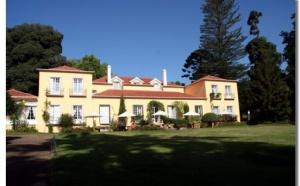 Madère : les « Quintas da Madeira » veulent tisser leur réseau sur la Toile