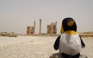 Aventure : Monsieur Pingouin, un TO qui n'a pas froid aux yeux