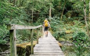 La grande traversée du Morvan : un nom épique, un parfum d'aventure et une découverte poétique...