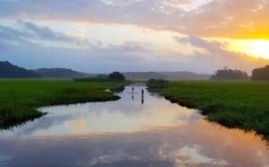 Le Comité du Tourisme de la Guyane annonce des mesures d'accompagnement pour les pros du tourisme