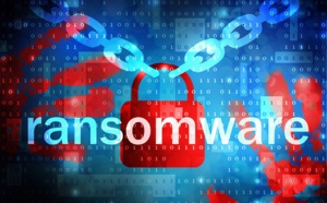 Ransomware : Misterfly victime d'une cyberattaque