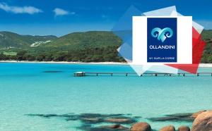 Ollandini Voyages