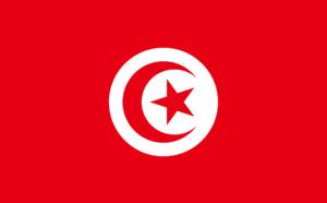 Restriction voyage Tunisie : test PCR négatif moins de 72h avant l'arrivée