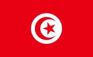 Précision test PCR Tunisie : les clients en voyage à forfait dispensés