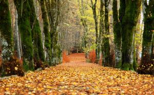 N°3 #PartezenCorse : nos dix bonnes raisons de visiter la Corse à l'automne